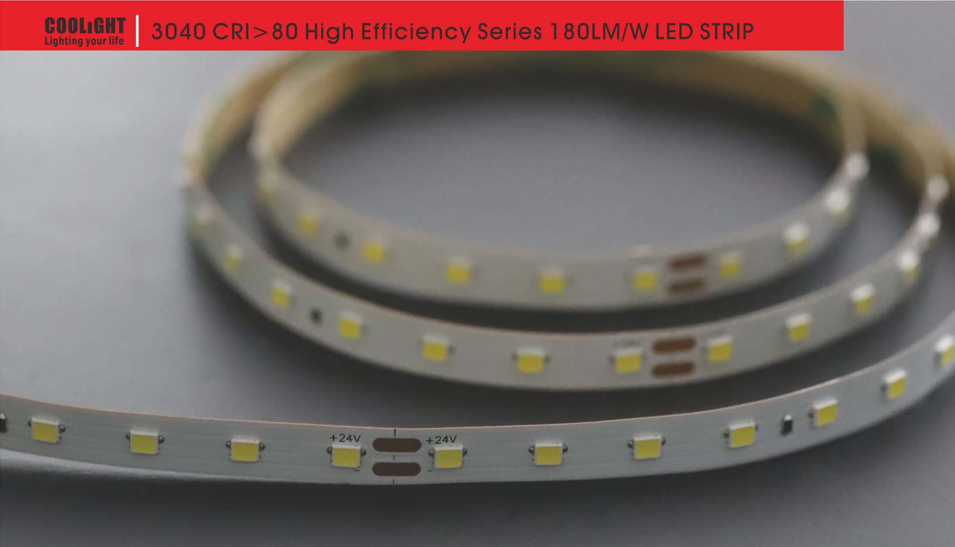 3040 80led/m 24v 4.8w led strip